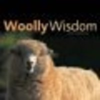 Woolly_wisdom